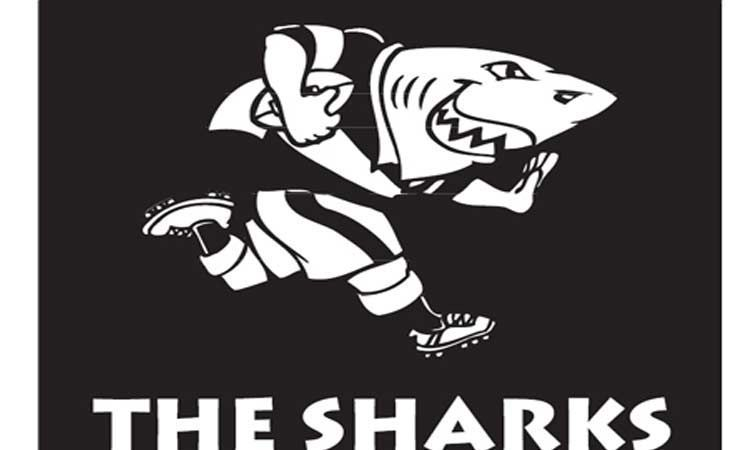 Sharks Logo Rugby Logo Rugby Union Teams Rugby Team
