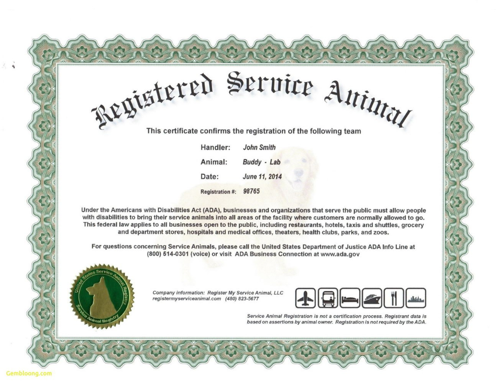 Service Dog Certificate Template Frightening Ideas