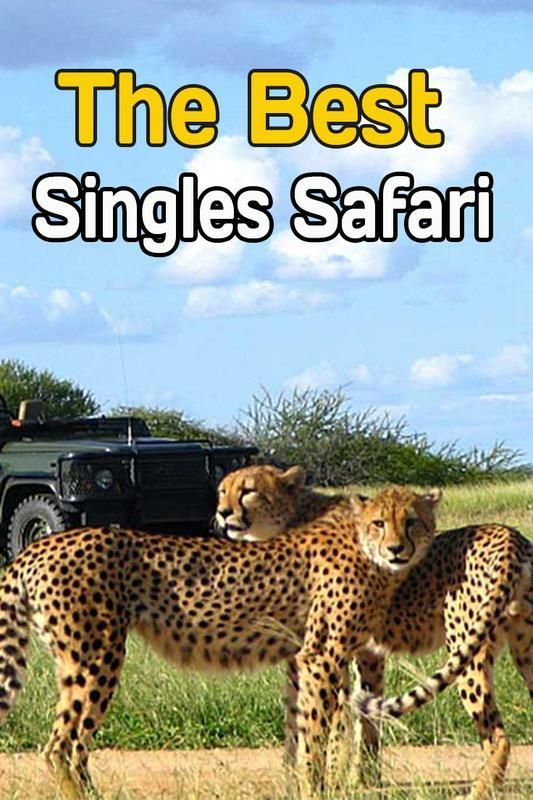Best travel for single men
