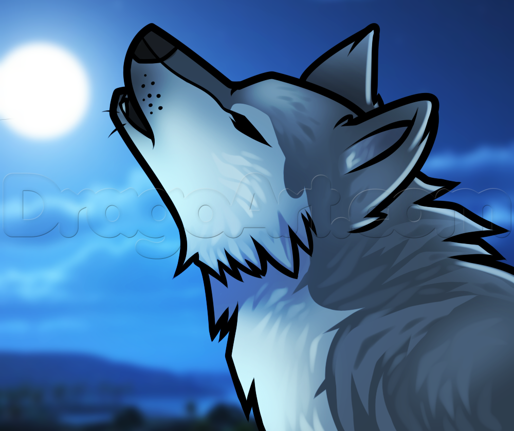 How to Draw a Howling Wolf Easy, Step by Step, forest