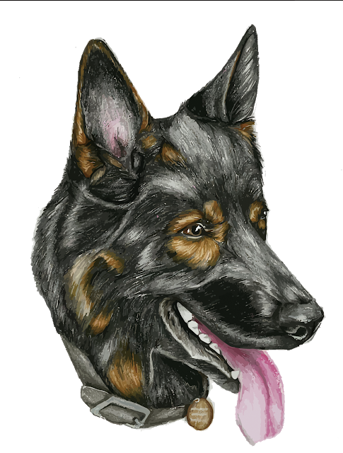 German Shepherd Puppy Illustration Dog Png Image German