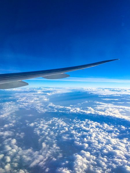 How I Cured My Fear of Flying – And By Fear I Mean Terror