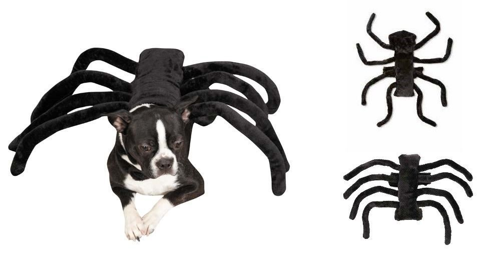 SPIDER COSTUMES FOR DOGS - Dress Up Your Pup to Look Like a Creepy Tarantula #  sc 1 st  Pinterest & SPIDER COSTUMES FOR DOGS - Dress Up Your Pup to Look Like a Creepy ...