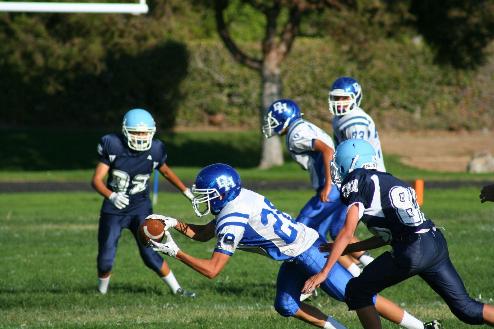 Dana Hills High School Football Football Dolphins Football Football Helmets