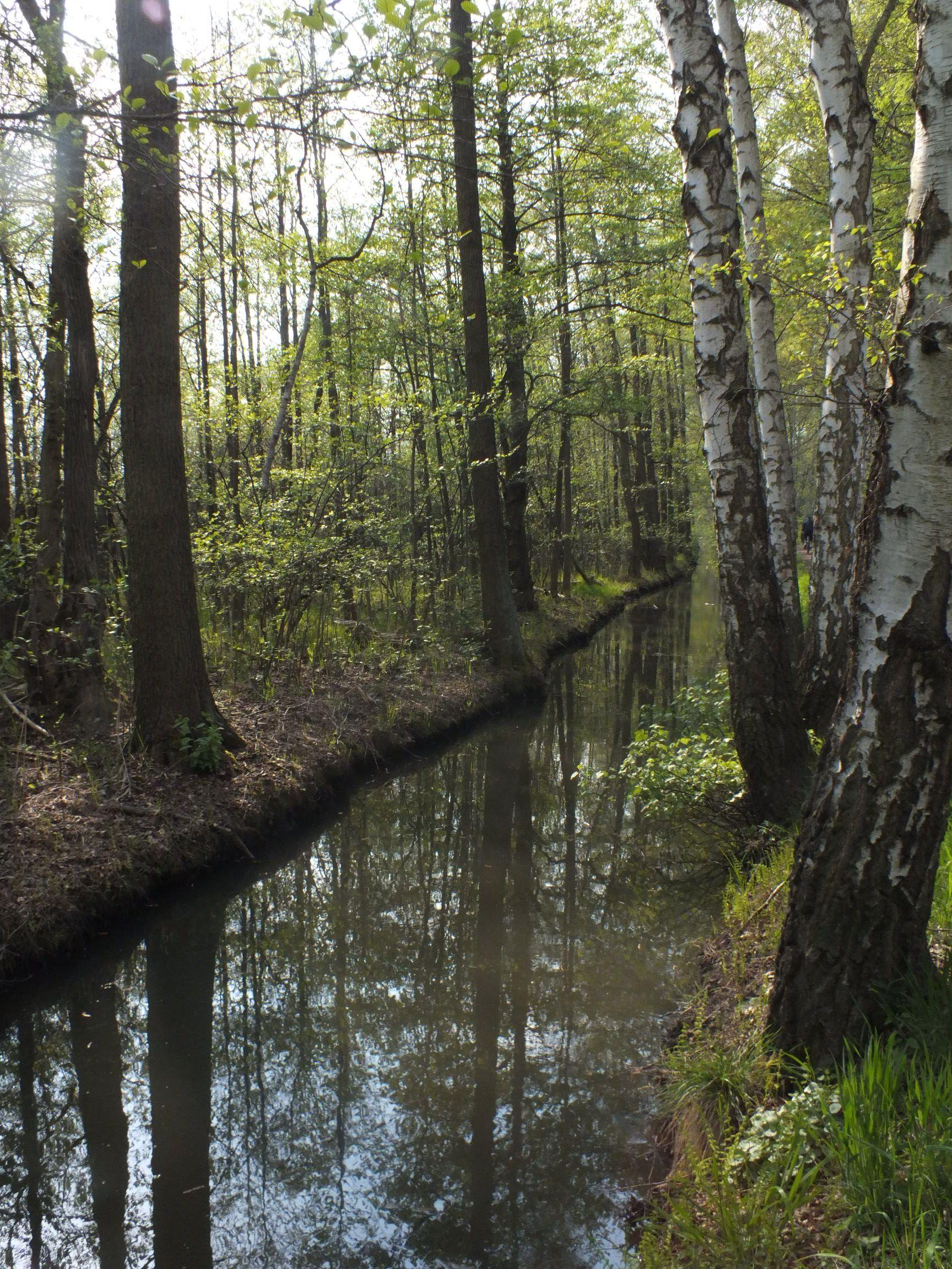 kleiner, nicht befahrener Kanal