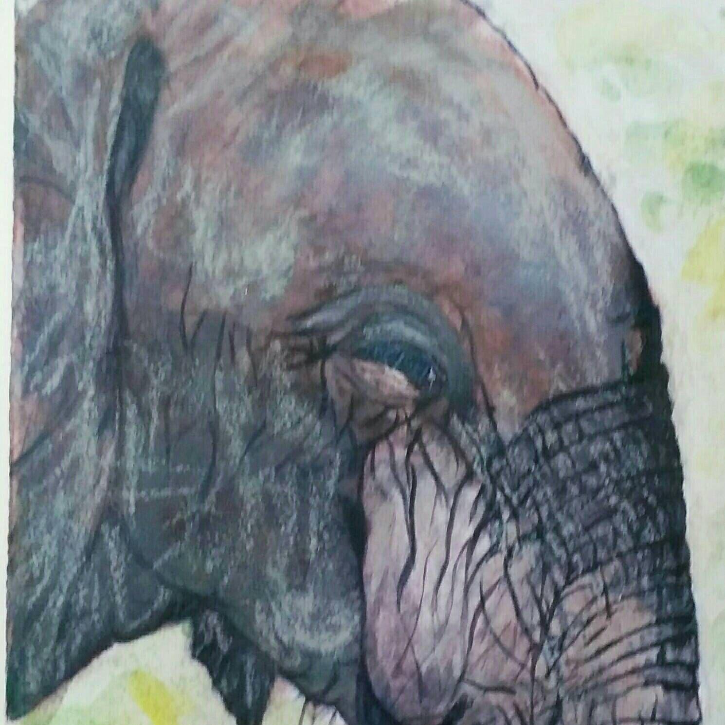 Christmas Cruelty 2020 Elephant True Beauty is Cruelty free painting Christmas Gift