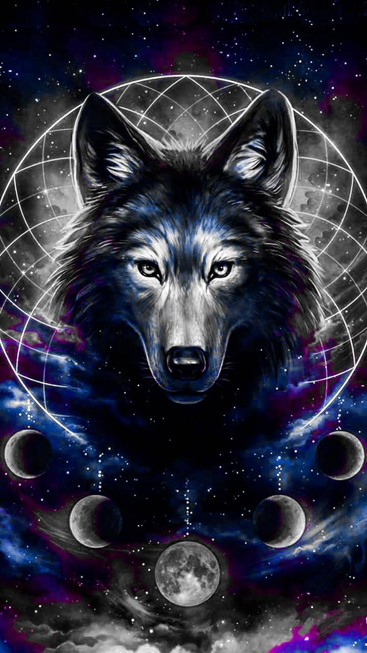 Download Wolf Drawing Wallpaper By Wildwolf0524 Fe Free On Zedge Now Browse Millions Of Popular Beautiful Wallpap Wolf Wallpaper Wolf Artwork Galaxy Wolf