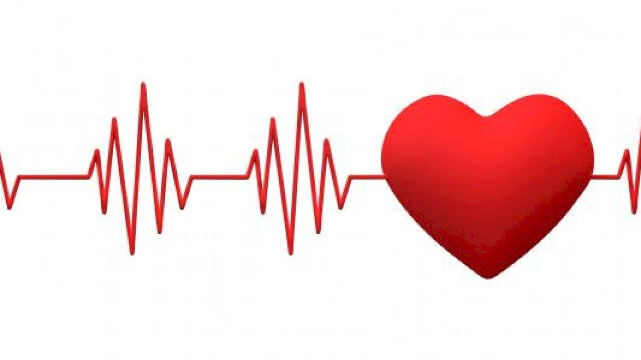 عدد ضربات القلب الطبيعية Home Decor Decals Home Decor Normal Heart