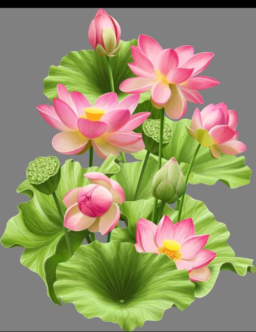 fleurs,flores,flowers,bloemen,png Lotus painting, Flower