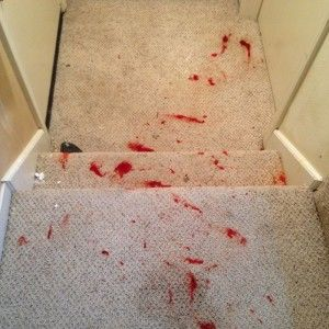 how to take hair dye out of carpet