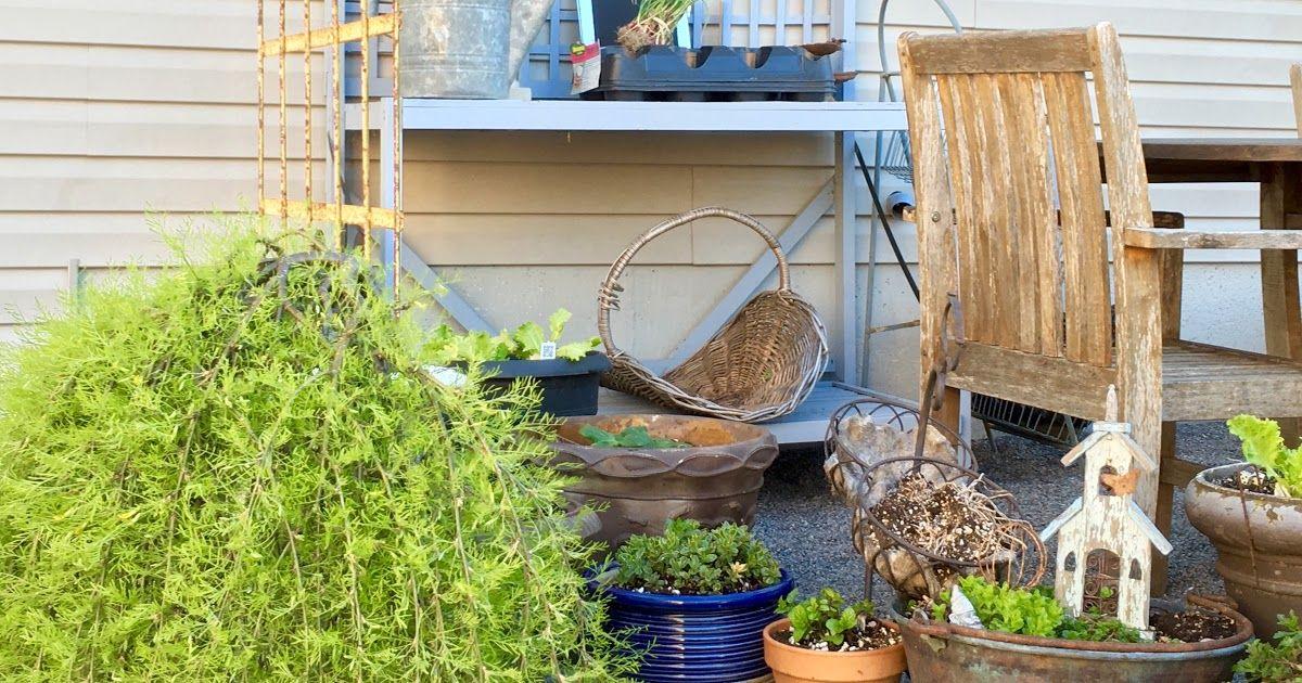 Image Result For Craigslist Winter Garden Image Result For