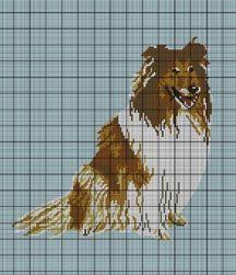 Beautiful Collie Portrait Crochet Pattern