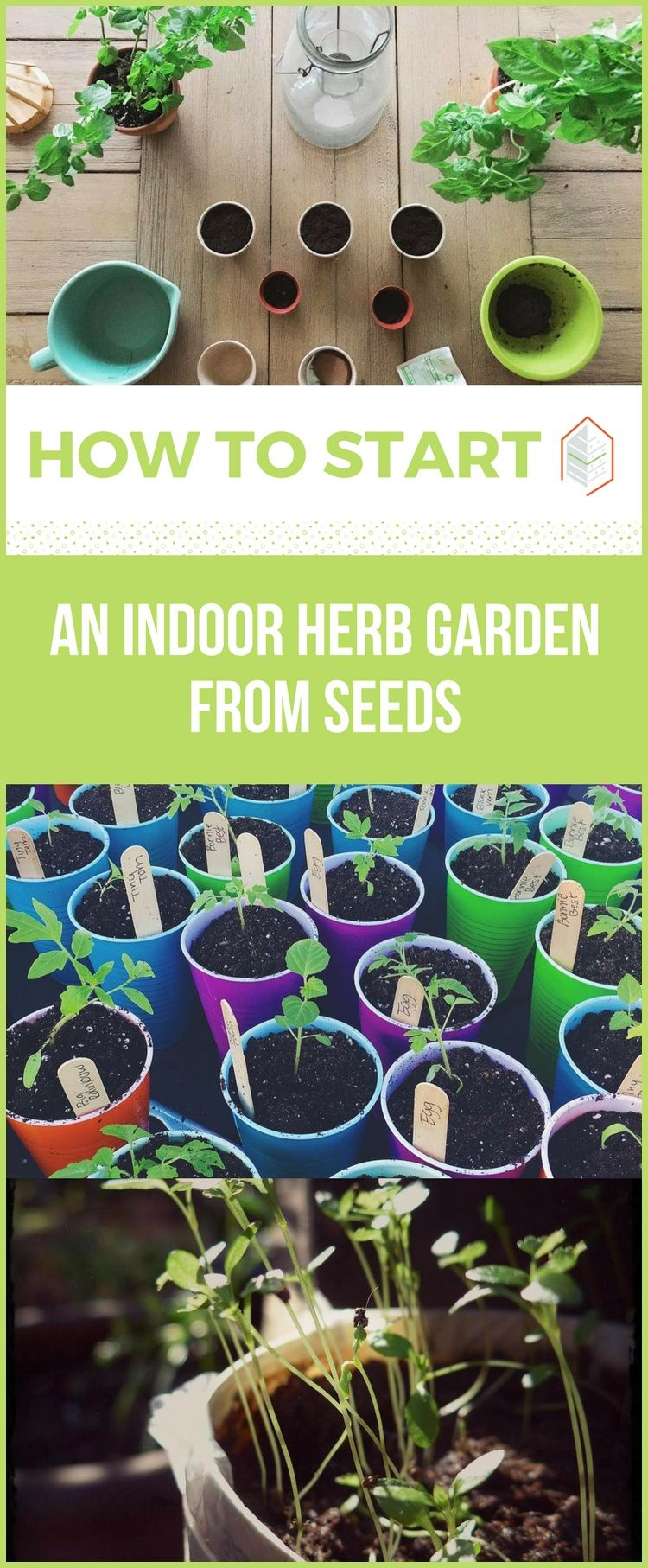 how to start an indoor herb garden from seeds - How To Start An Indoor Herb Garden
