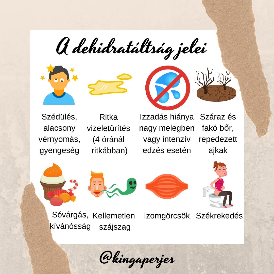 Napi 4 étkezés a zsírvesztés érdekében