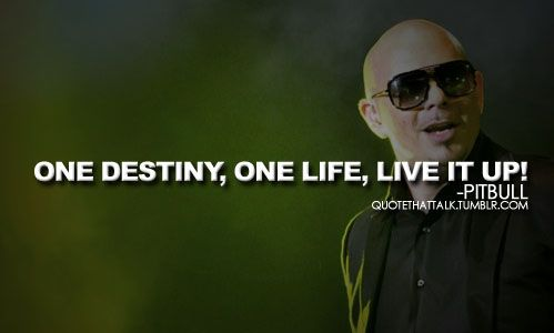 Pitbull Rapper Quotes Quotesgram Pitbull Rapper Rapper Quotes Pitbull Lyrics