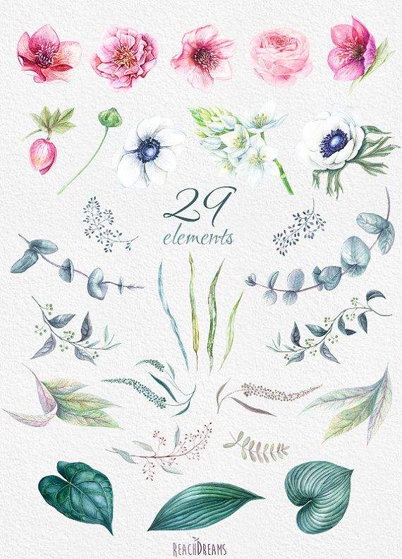 This set of 29 high quality hand painted watercolor - High resolution watercolor flowers ...