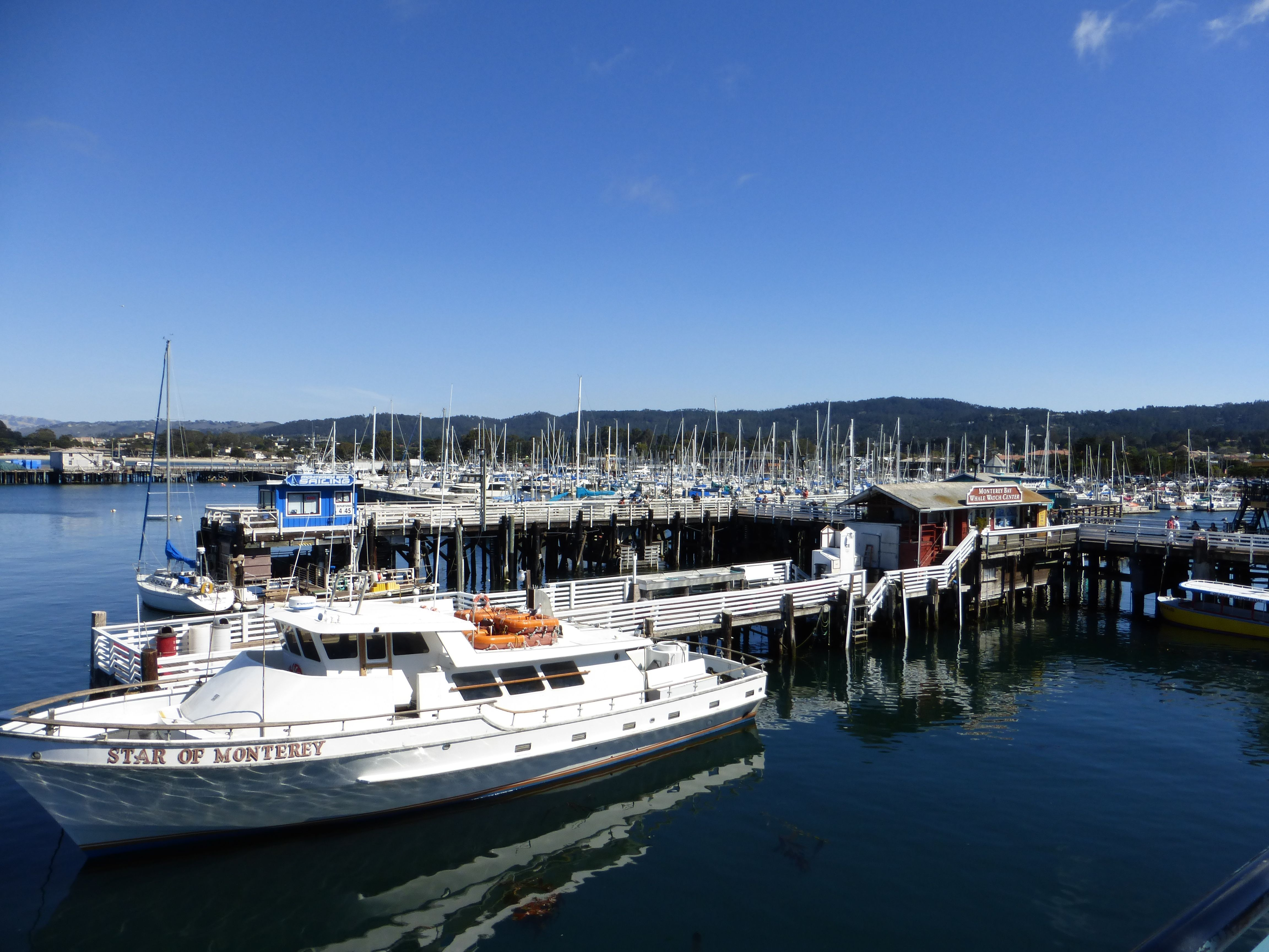 Monterey Bay Harbour and Marina. (Photo: WendyJames ~ August 2014)