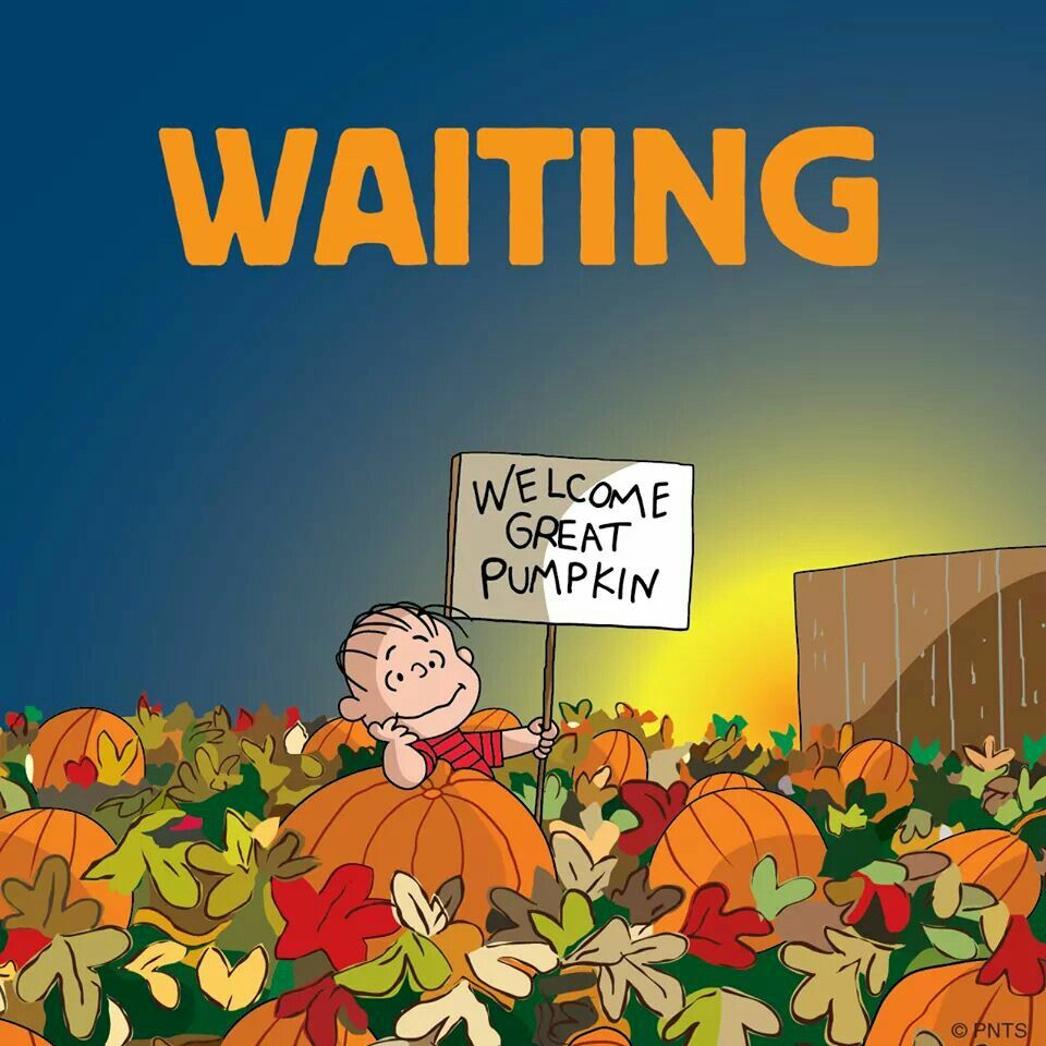 It's The Great Pumpkin Charlie Brown Quotes Snoopy  Peanuts & Snoopy  Pinterest  Snoopy Charlie Brown And