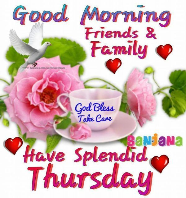 Good Morning Friends Family Have A Splendid Thursday Good Morning Thursday Good Morning Thursday Images Good Morning Friends
