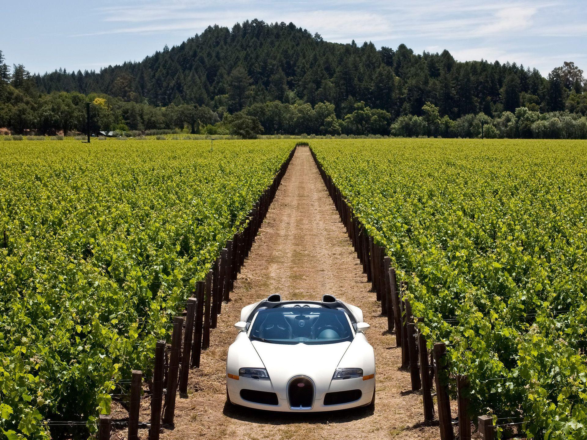 2010 Bugatti Veyron 16 4 Grand Sport In Napa Valley Front 4 1920x1440 Wallpaper Bugatti Veyron Bugatti Veyron 16 Bugatti