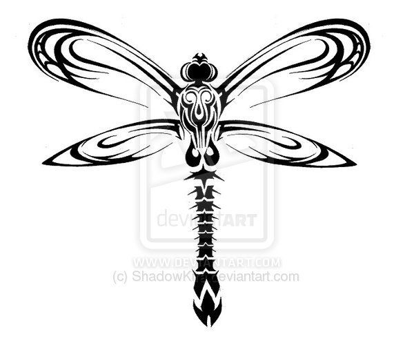 Dragonfly drawings tribal dragonfly design by shadowkira on deviantart