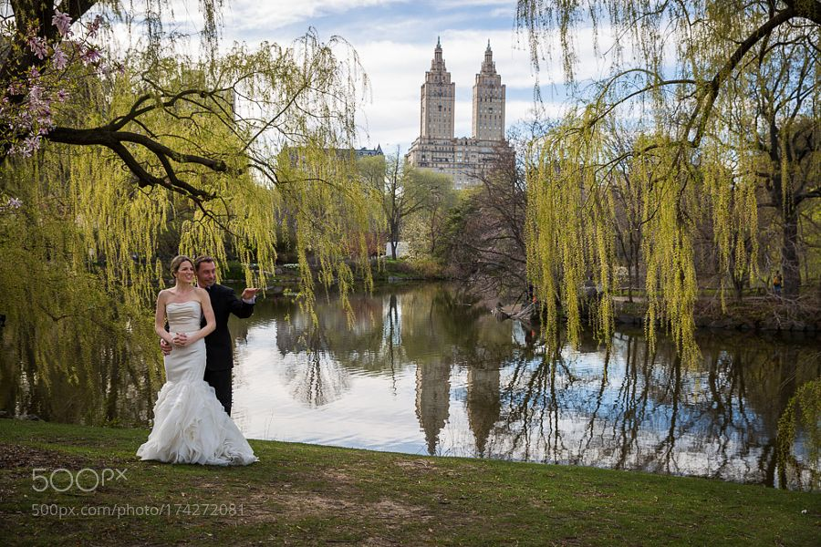 Central Park NYC by SelimTuzun