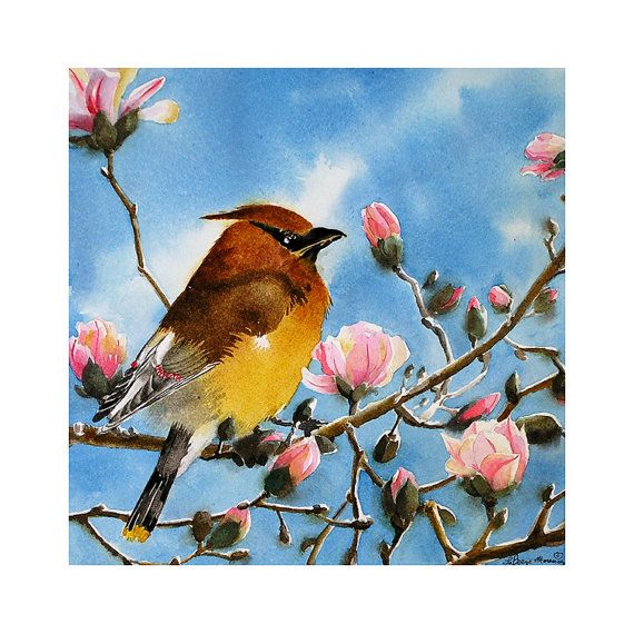 Bird Fine Art Watercolor Print Cedar Waxwing Golden by LaBerge, $28.00