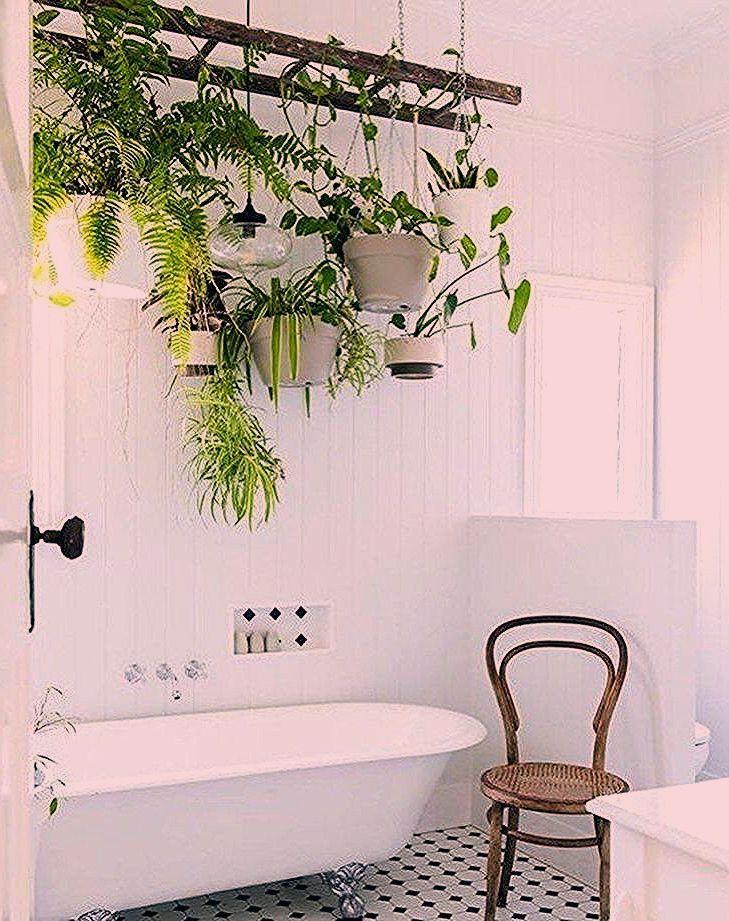 Photo of 40 atemberaubende Zimmerpflanzen Dekor Ideen für Ihre Wohnung – Wohnaccessoires