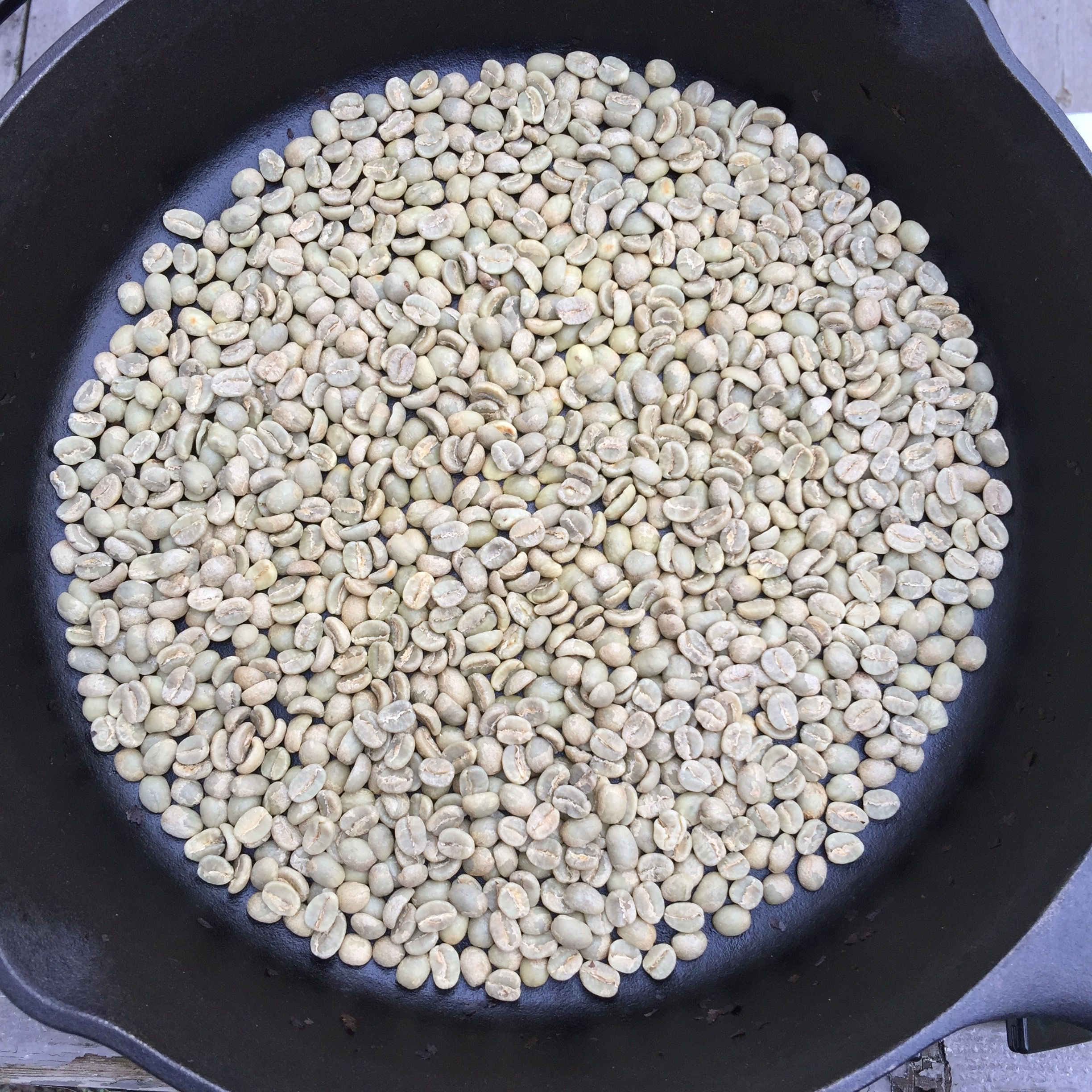Green coffee beans in a cast iron pan, ready to roast