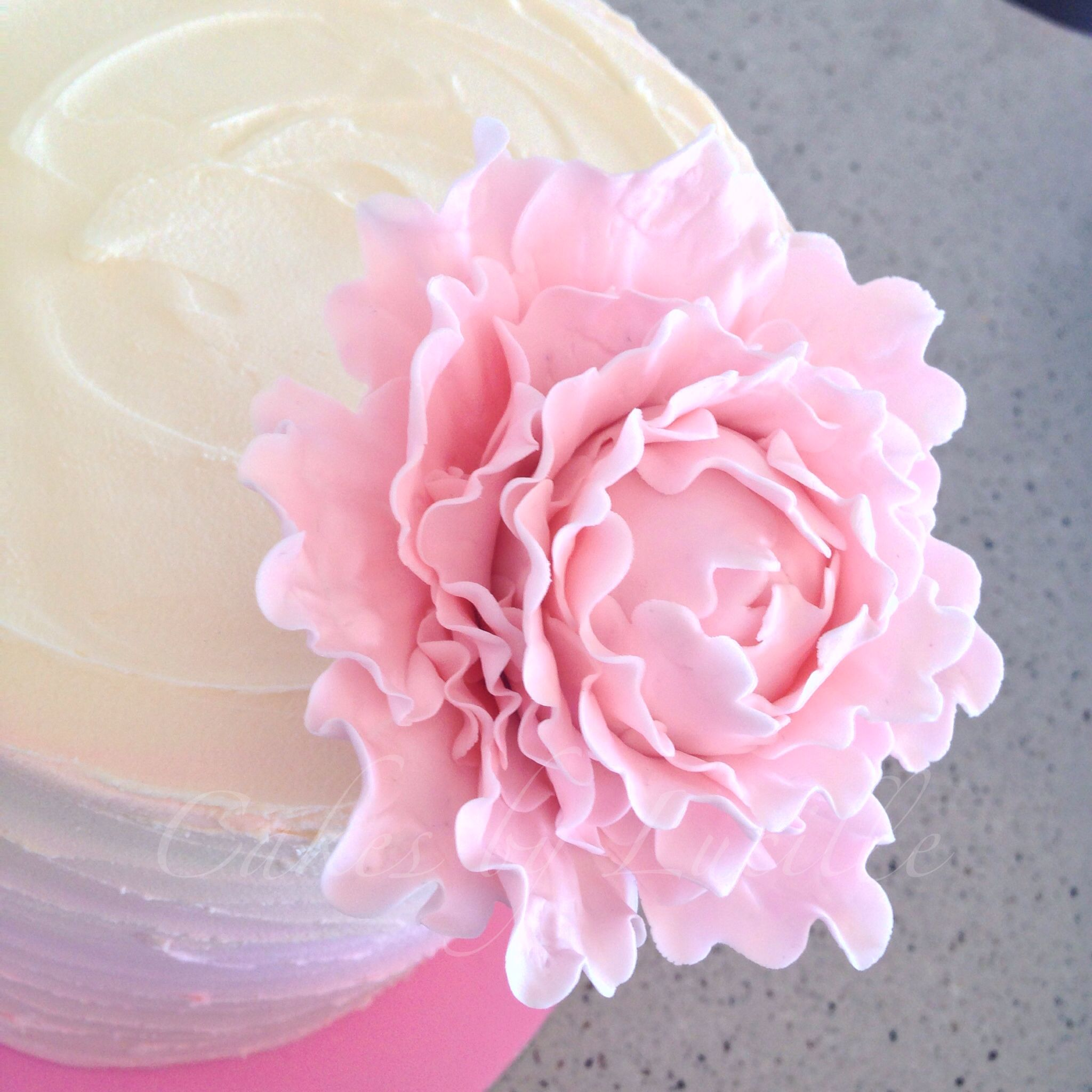 Handmade sugar flower