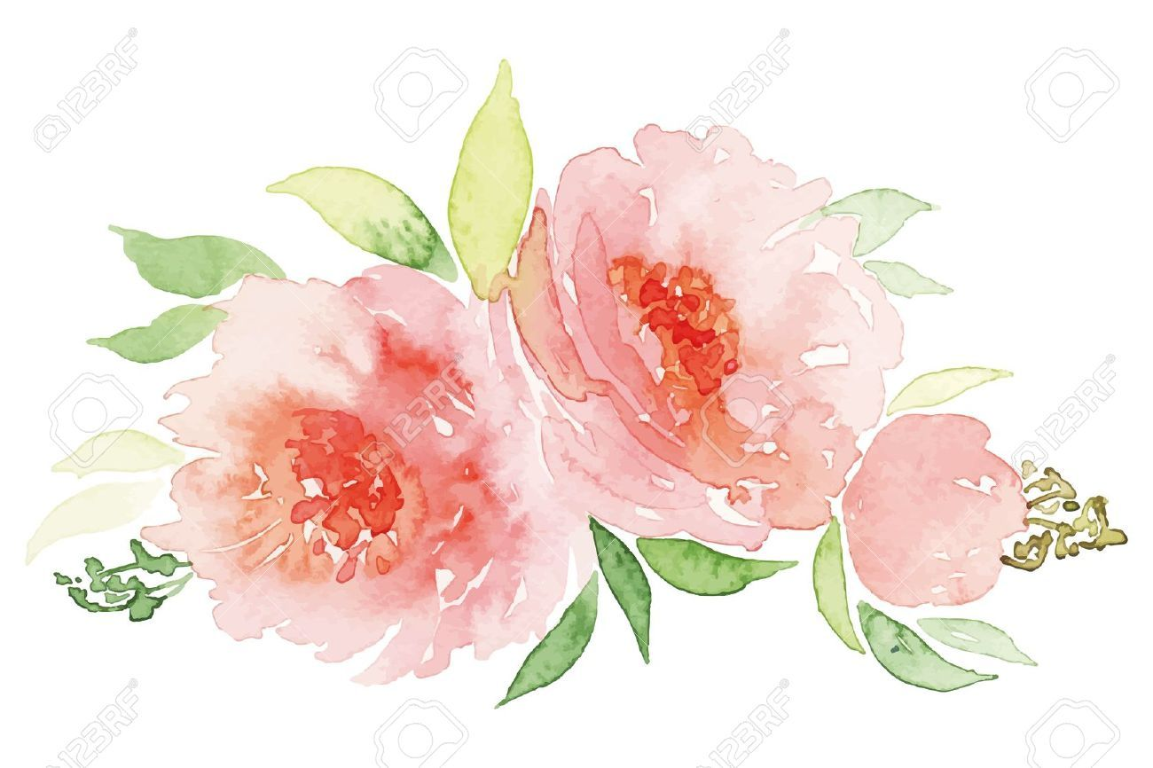 Pink Flowers Watercolor Google Search Art Color Acuarela