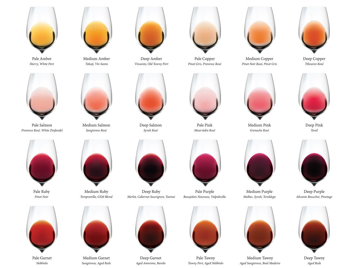 Complete Wine Color Chart Download