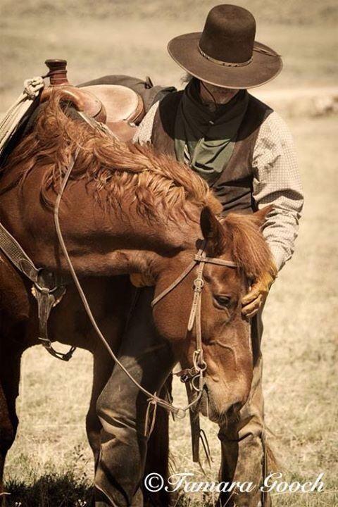 Cowboys Best Friend Tumblr