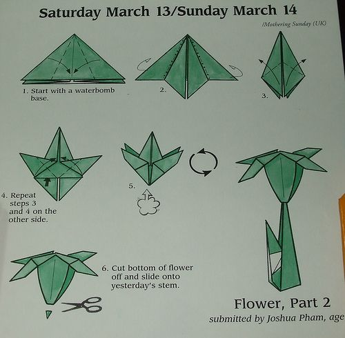 Step By Step Origami Flower Instructions Origami Lily Folding