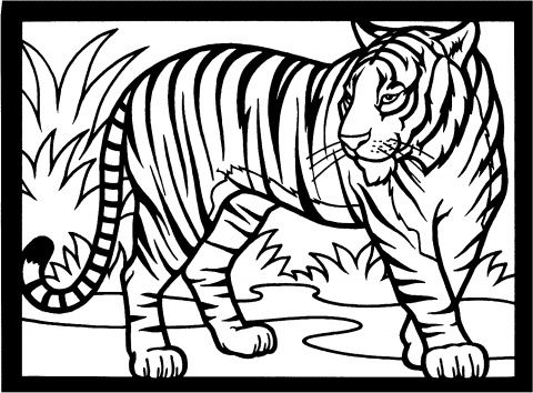 Marvelous Baby Jungle Animals Coloring Pages | Tigers Coloring Pages | Super Coloring