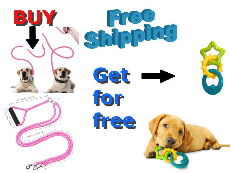 Double Dog Leash Handle 2 Pet Dogs And Get A Gift Puppy Starter Packs Chew Toys Peteast Dog Leash Small Dogs Dogs