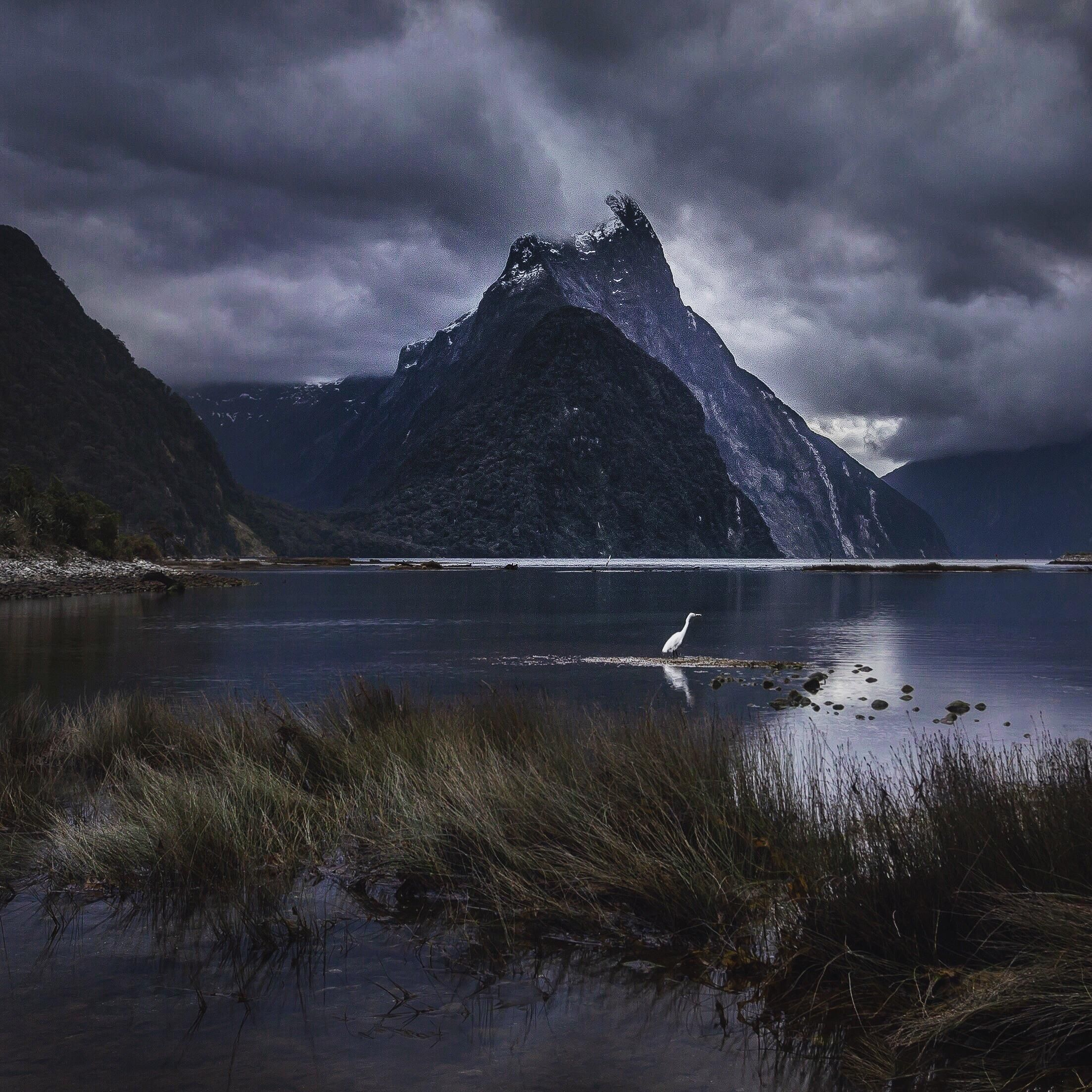 Moody Milford Mornings Milford Sound New Zealand 1300x1300 Oc Mountain Landscape Photography Scenery Photography Landscape Photography