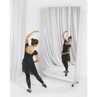 Glassless Mirror Single Panel Wall Mounted From Rose Brand Home Dance Studio Gym Design Rose Brand
