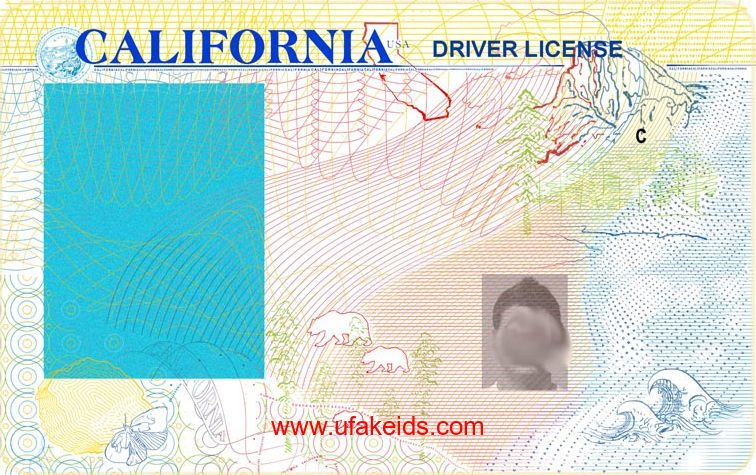 License License In Drivers Fake California Id Template 2019 Ca