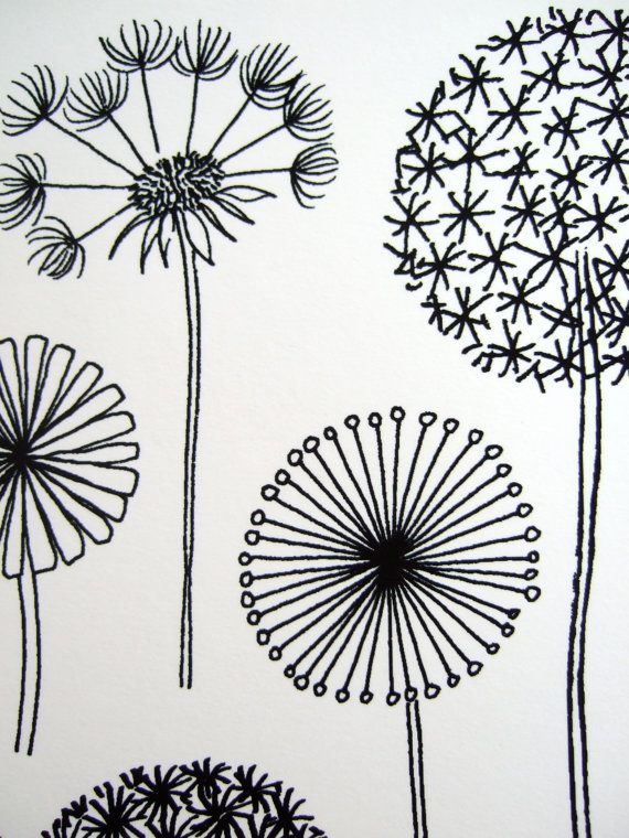 Dandelions, limited edition giclee print | tagle patterns ...