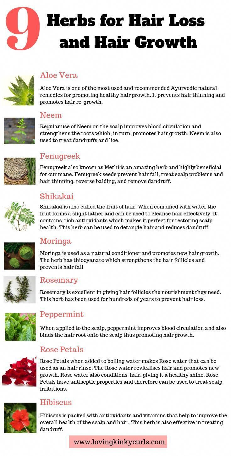 Here is a list of 9 Natural Herbs that have been used for decades to prevent hair loss and promote healthy hair growth. Incorporate 2-3 of these herbs in your hair care regimen and you will be amazed by the results.   #naturalhair #4chair #4cnaturalhair #longhair #haircare #naturalremedies #naturaloil #hairgrowthtips #herbsforhealth #4chaircangrow #TheBestOilForHairLoss