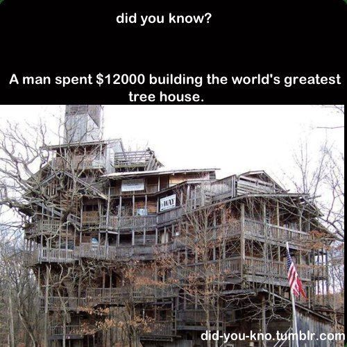 house worlds most expensive treehouse - Most Expensive Tree House In The World