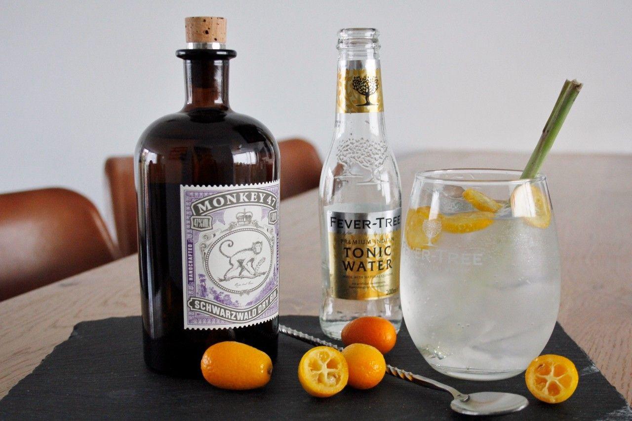 Gin Tonic met Monkey 47 foto   &&Juniperus communis$$ in