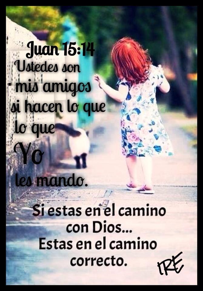 #Dios  ❤️Tu y Yo somos amigos de Dios porque hacemos lo que Él nos manda!!  No hay un amor más grande que el dar la vida por los amigos.  Ustedes son mis amigos si hacen lo que yo les mando.  (Juan 15:13-14 NTV)