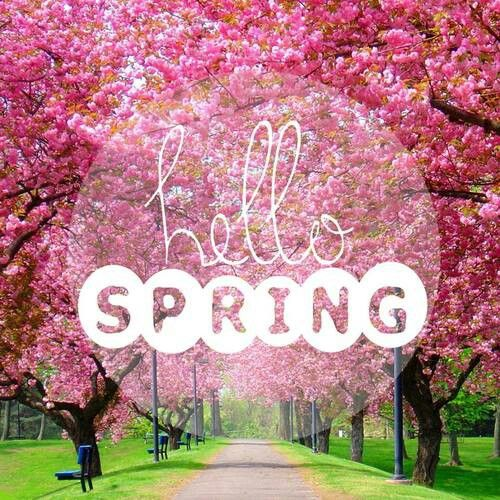 Hello Spring Fruhling Spruche Fruhling Jahreszeiten