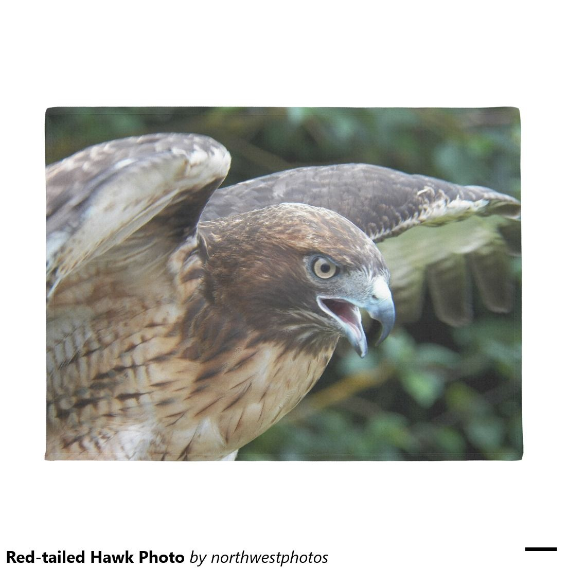 Red-tailed Hawk Photo Doormat