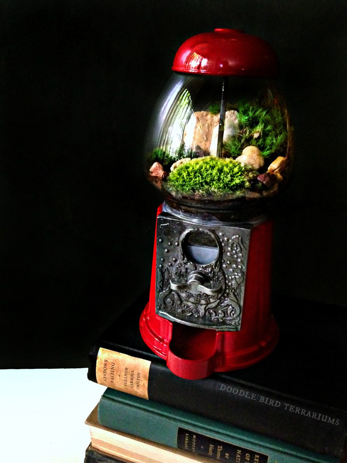 Terrarium carousel gumball machine upcycled recycled by