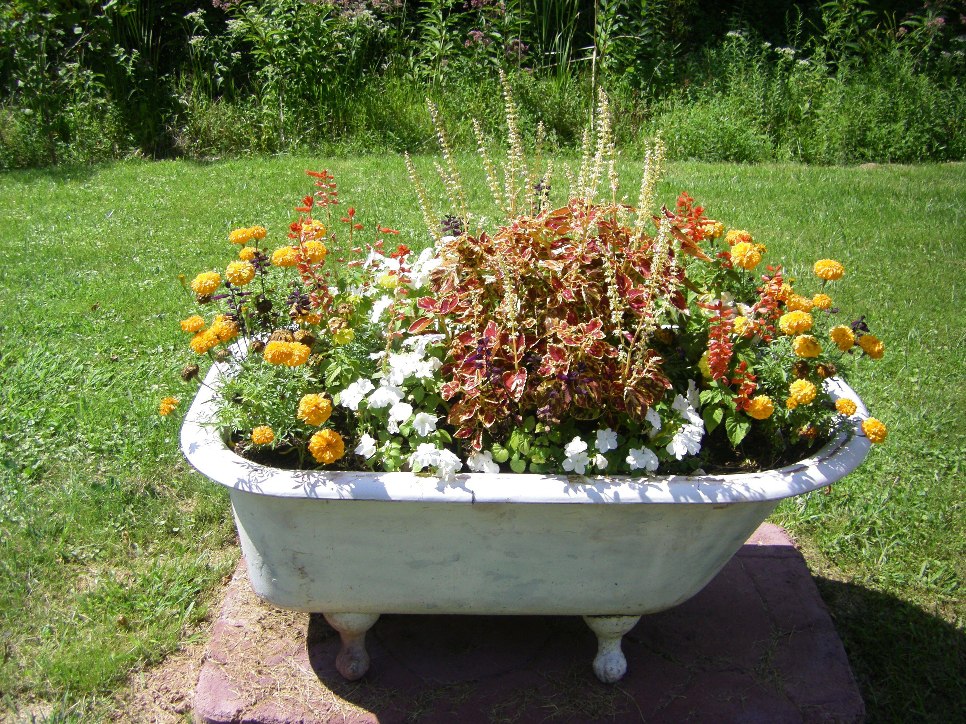 Flower Garden In Tub