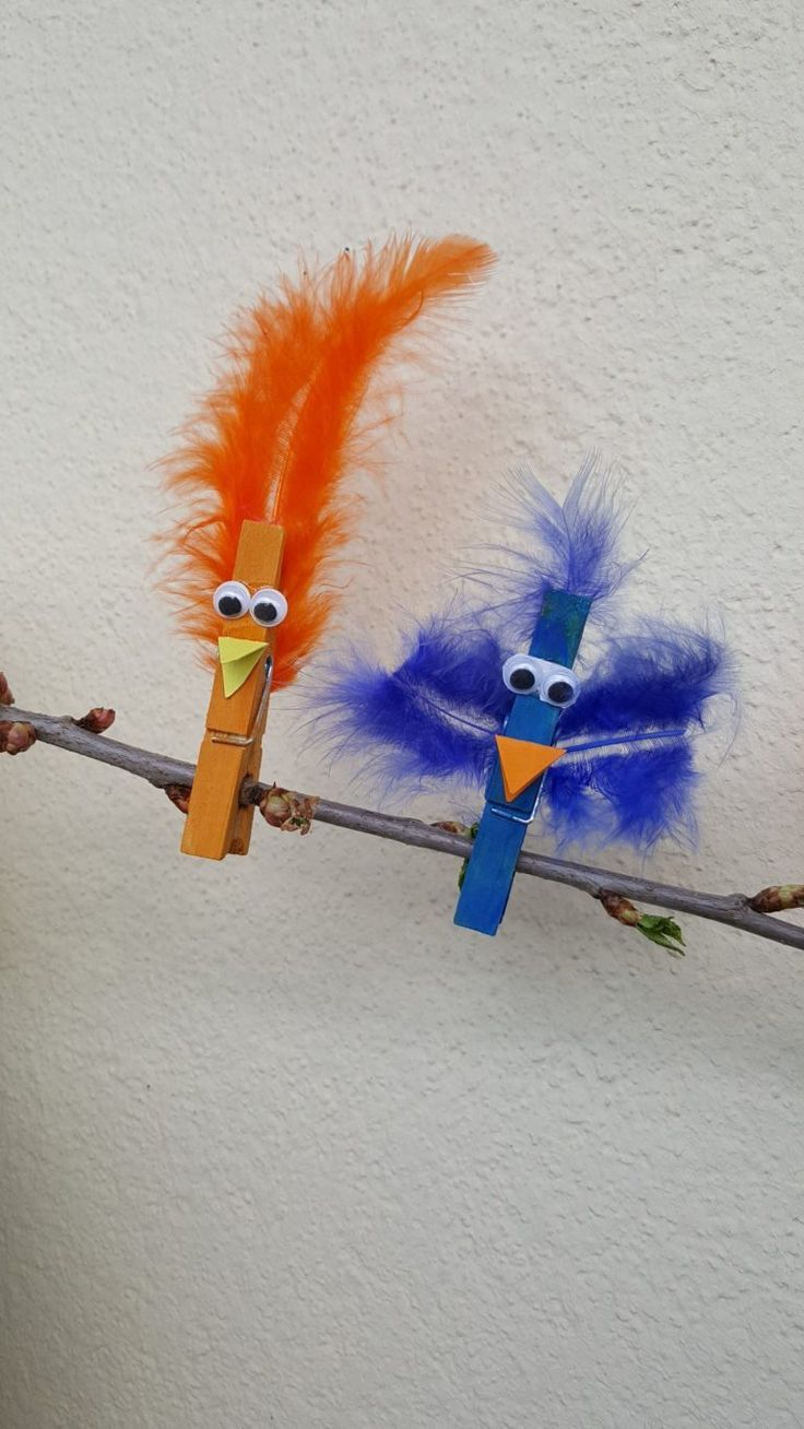 Photo of Crafting tip: Colorful birds made of clothespins – dorfmama.de