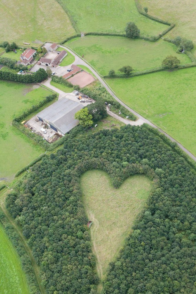 """After the sudden death of Janet, his beloved wife of 33 years, Winston Howes, a British farmer, wanted a space to remember her. So in a flash of inspiration, he planted 6,000 oak trees in a nearby field, carefully planting them in the shape of a heart."" Hot-air balloonist Andy Collett chanced upon the hidden tribute 17 years later. Replying to a reporter's inquiry, Howe says it's ""a lovely & lasting tribute to her which will be here for years."" Daffodils bloom in the middle each spring."